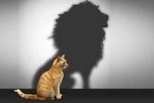 Por que a autoestima é tão importante